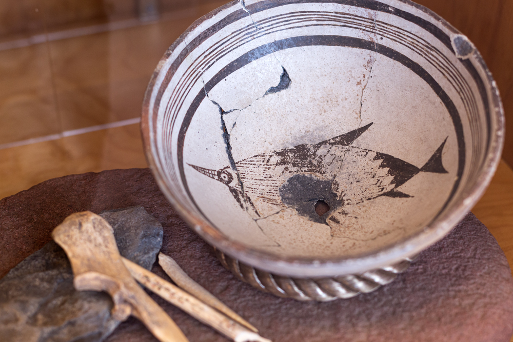 Porpoise on Mimbres Bowl from the  Deming Luna Mimbres Museum, New Mexico