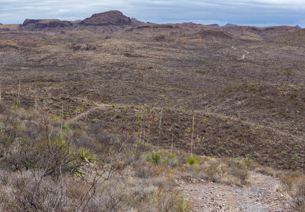 Big Bend Ranch State Park covers 311,000 acres of the Chihuahuan Desert.